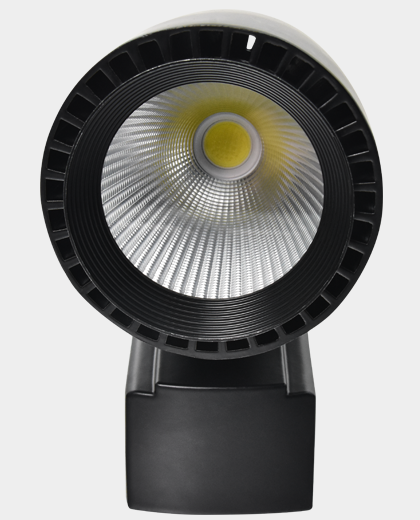 40 Watt Led Ray Spot