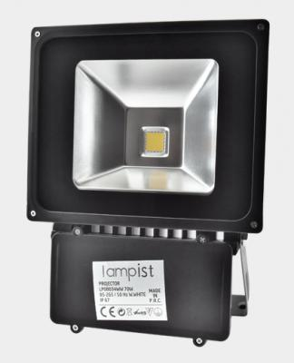 70 Watt Cob Led Projektör